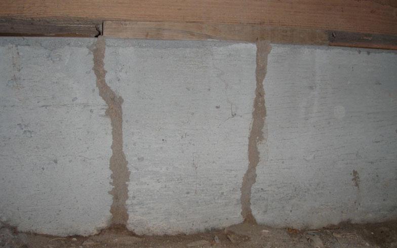 【画像1】床下にできた蟻道。基礎部分にきれいな土の筋道ができている(画像提供:テオリアハウスクリニック)