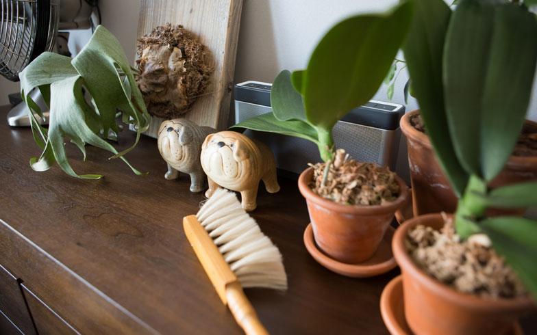 【画像10】寝室のドレッサー兼チェストにグリーンや雑貨を飾って潤いある空間に。ブラシはここが定位置で化粧パウダー等をさっと掃除するのに便利。出していても様になる温もりあるデザインです(写真:片山貴博)