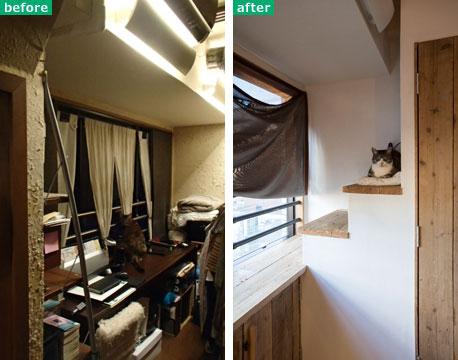 【画像2】ここに居た!やっぱり猫は階段が大好き。窓辺につながる特等席は、収納に合わせてプランされた猫用の階段(画像提供:ミサワホームイング)