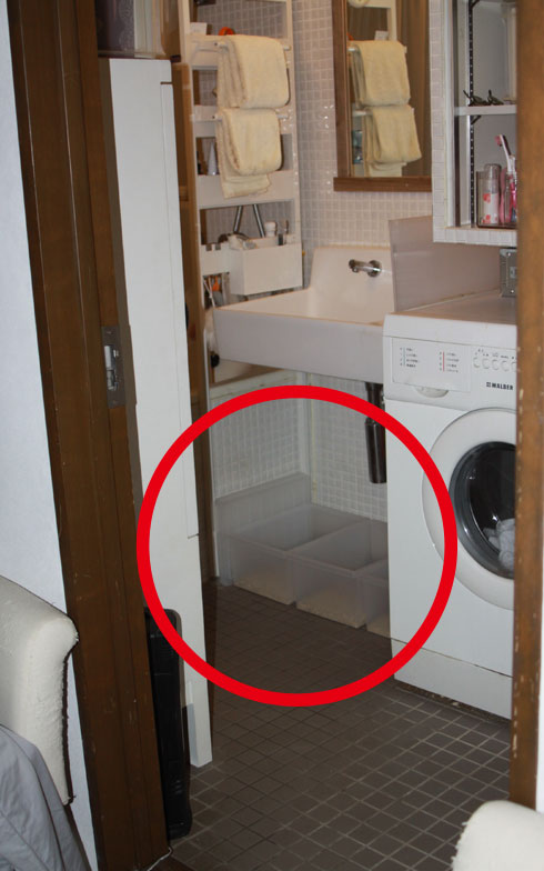 【画像6】「猫トイレはこれまでいろいろ使ってきましたが、今は無印良品のキャリーボックスが使い勝手良くて」とKさん(写真撮影:Kさん)