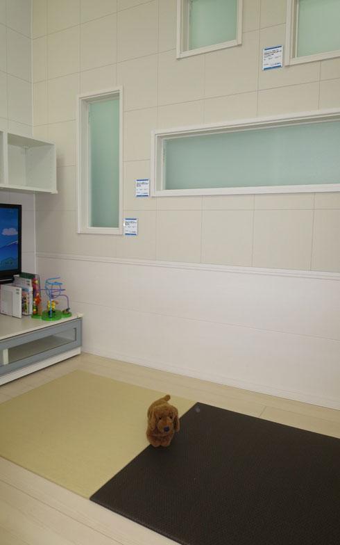 【画像11】床材や置き畳、壁材や窓も合わせて見ることができる。DAIKEN新宿ショールームのペットコーナーにて(写真撮影:藤井繁子)