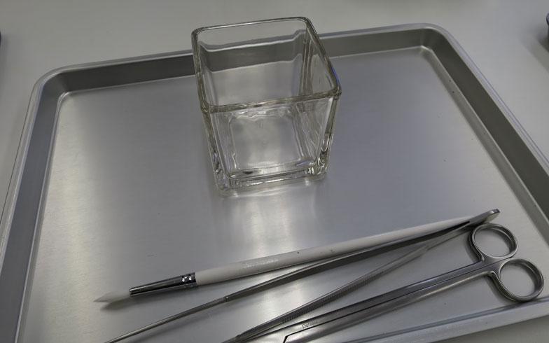 【画像2】初心者は口が大きいグラスのほうがつくりやすいということで、縦×横×高さ約10cmのこちらをチョイス。道具は、絵筆のような刷毛と、ピンセット、ハサミの3つ(写真撮影/末吉陽子)