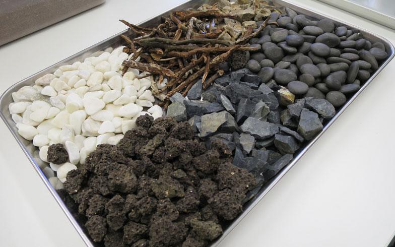 【画像5】全部で6種類の石や枝から、好きなものをチョイス(写真撮影/末吉陽子)