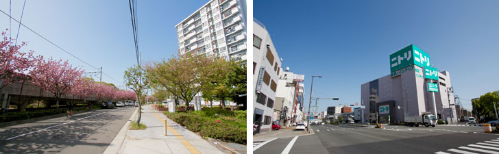 【画像12】JR関西線・環状線今宮駅の近くにある大阪市営大国住宅。線路沿いの桜並木がきれいだった(左)南側の国道43号線沿いにはニトリもある(右)(写真撮影/井村幸治)