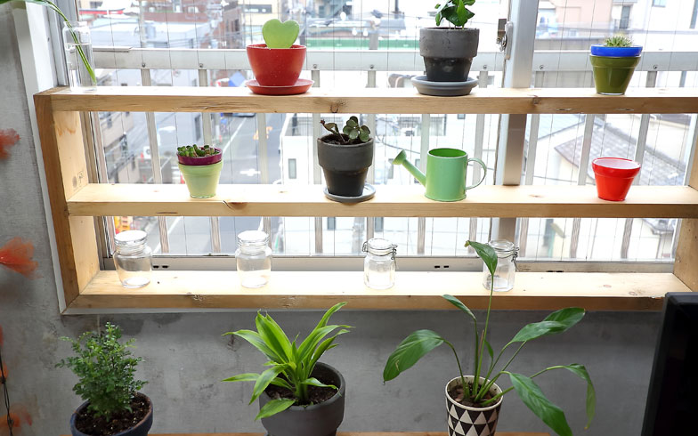 【画像7】共用スペースの窓辺には、入居者がDIYでつくった観葉植物の展示棚を設置。相談しながら設置することでインテリアのセンスも磨かれそう(写真撮影:飯田照明)