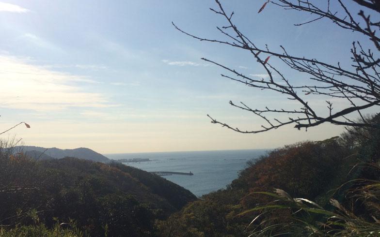 【画像1】ランニングルートの披露山公園(画像提供/河本ここのさん)