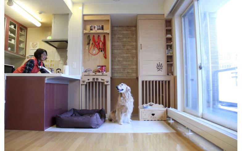 愛犬家住宅コーディネーターに聞く、犬のためのリフォーム術