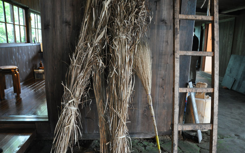 【画像7】昨年、秋に刈り込んだ、茅葺き屋根の原材料・すすき。一年をかけて乾燥させる(写真撮影/嘉屋恭子)