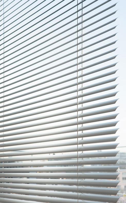 【画像1】とくに白いブラインドはより光を反射してくれるので、目隠しをしながら太陽光をしっかりお部屋に取り込んだり、熱を反射できたりするそう(写真提供/立川ブラインド工業)