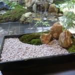 庭師が伝授! 自宅のベランダに「日本庭園」を造るコツ