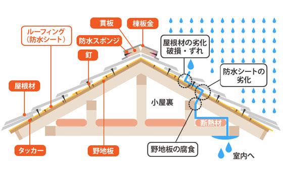【画像1】家を雨漏りから防いでいる屋根構造。屋根の破損は雨漏りの原因に!(画像提供/街の屋根やさん)