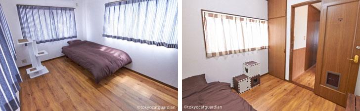 【画像3】各居室と猫のおもちゃ(画像提供/東京キャットガーディアン)