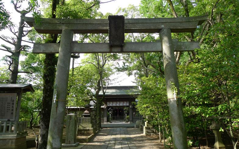 【画像1】緑が茂る白幡天神社の境内。幕末から明治中期にかけて活躍した絵師・柴田是真画の連句額(県文化財)を所蔵していることでも知られる(写真撮影/中村宏覚)