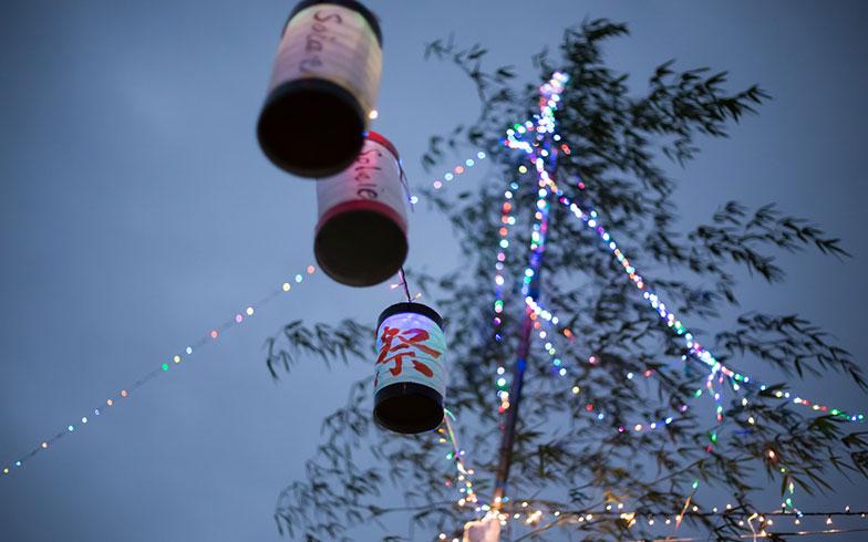 【画像7】陽が落ちLEDが灯る。なお、LEDはクリスマスパーティーと兼用とのこと(写真撮影/片山貴博)