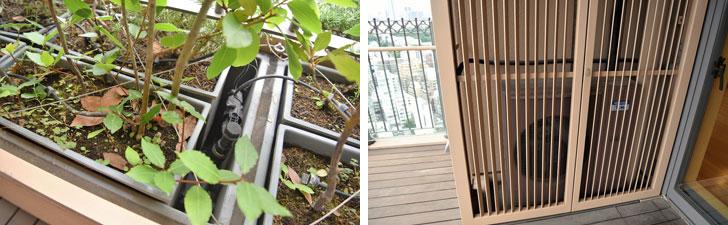 【画像3】写真左/バルコニーの植栽には自動的に水が散布される気の利きよう 写真右/エアコンの室外機は美観を損なうということで目隠しされている(写真撮影:榎並紀行/やじろべえ)