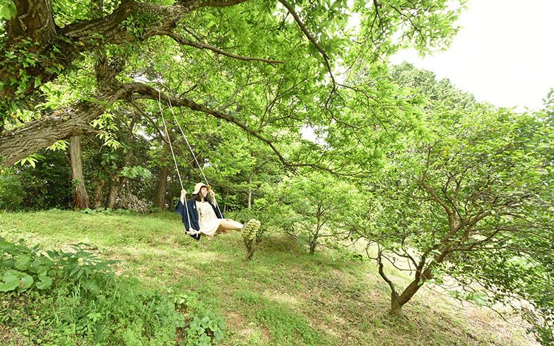 【画像2】畑には木製ブランコやBBQスペースも設置(写真撮影/谷口竜平)