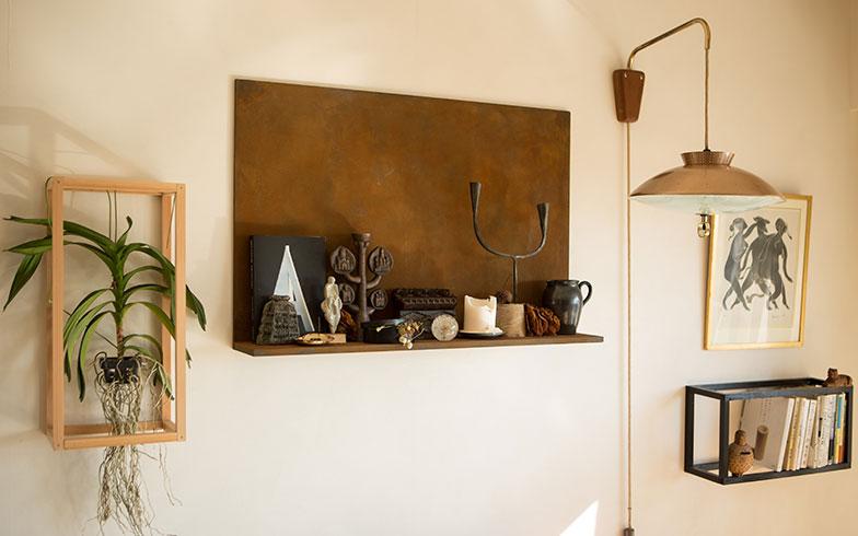 【画像4】リビングの壁は、ラーチ合板とシナベニアを二重に張りつけ、13mmの厚さにした『自由な壁』にチェンジしたことで、植物や本棚、飾り棚を設置することができた。ちなみに、棚もすべて手づくり(写真撮影/片山貴博)