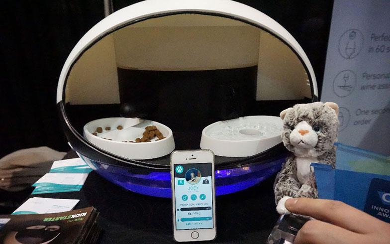 【画像4】自動で餌&水やりができるうえに、浄水機能もついた『Catspad』。スマホのアプリ経由で、餌をきちんと食べているかどうかも確認できるそう(画像提供/西村真里子)