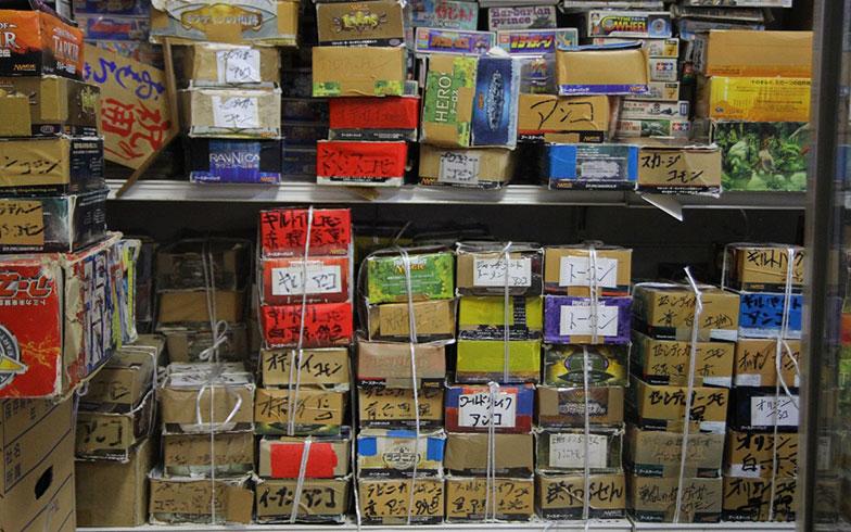 【画像12】放課後になると店内で小学生によるカードバトルが勃発。自分のカードはお店にキープできるシステム(写真撮影/小野洋平)