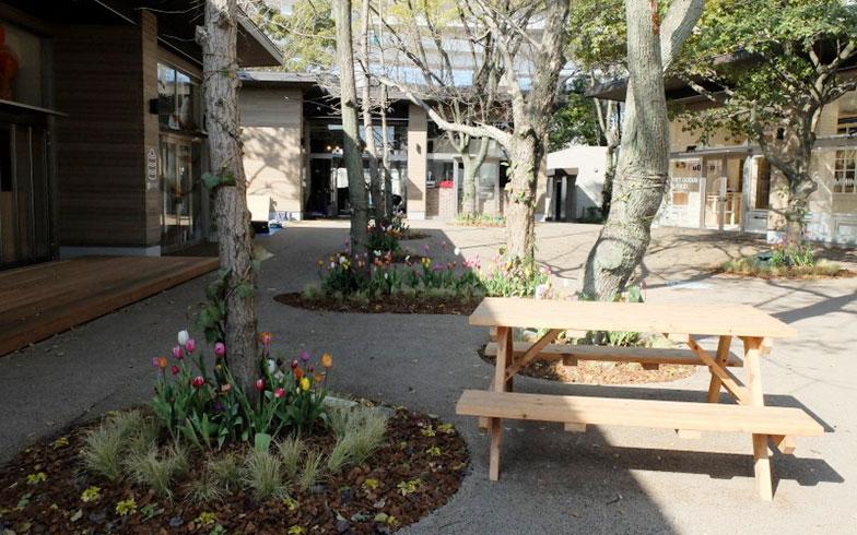 【画像14】金城ふ頭中央緑地の跡地にできたため、緑が多く残る。敷地内にはチューリップが植えられ、ベンチやテーブルが点在(写真撮影/倉畑桐子)