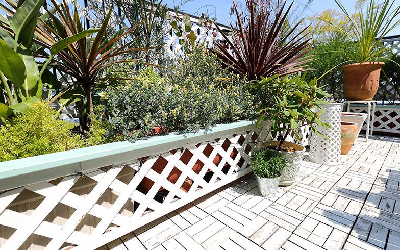 【画像2】「植木の鉢がバラバラなのが気になる」と柵も手づくりした。IKEAで購入したウッドパネルは、茶色から白にペイントして明るい雰囲気に(写真撮影/飯田照明)