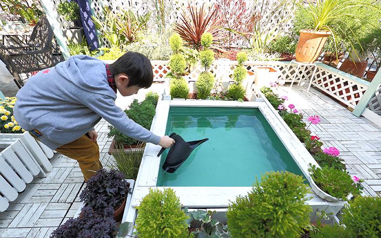 【画像4】「効率よく水やりをしたい」と水をためているこちらの水槽は、セメントを混ぜる容器「トロ舟」を活用。防水性にも優れていて丈夫なのでおすすめとのこと。時折ヒヨドリが集まり水浴びをしているそう(写真撮影/飯田照明)