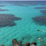 憧れの離島移住……実際どうなの? 日本最南端の有人島・波照間島で聞いてみた