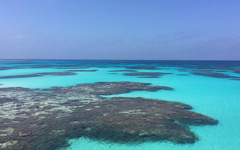 【画像4】波照間の美しい海の色は「波照間ブルー」と呼ばれている(画像提供/チヒロさん)