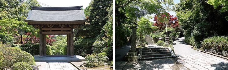 【画像8】アンノ邸周辺は緑豊かで神社や寺院も多く、どこか懐かしい家並みが続く(写真撮影/飯田照明)