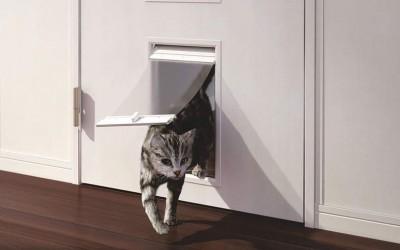 愛猫が部屋を自由に移動できる「ペットドア」。設置する方法は? 金額や期間はどのくらいかかる?