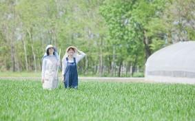 """都市近郊の農地がなくなる? """"生産緑地、2022年問題""""を知っていますか?"""