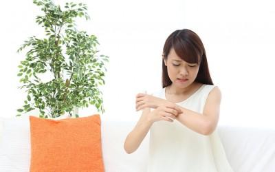 蚊の侵入リスクを減らす! 窓と網戸の正しい位置関係とは?