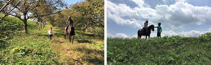 【画像2】「マリヤの風」では馬とコミュニケーションしながら一緒に自然を楽しむウエスタンという乗馬術を取り入れています。豊かな自然の風景の中だから癒やされます(画像提供/馬Cafe マリヤの風)