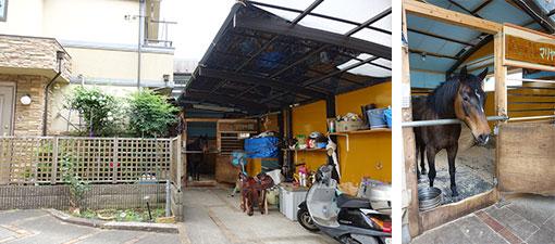 【画像3】建築業の知人が、2日という急ごしらえで自宅ガレージを馬小屋に改装してくれました。マリヤはサラブレッドより小柄なクオーターホースという種類で、ガレージがちょうどいいサイズ。逃げたりすることはありません(写真撮影/金井直子)