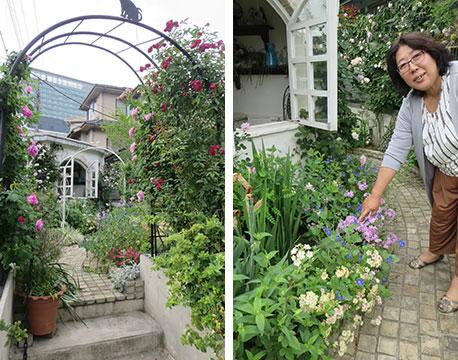 【画像3】アーチゲートの向こうにガゼボのような小屋。「このファセリアトロピカルサーフは今年植えた新しい花ですが、きれいに咲いてくれました」と金子さん(写真撮影/藤井繁子)