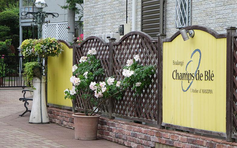 【画像13】黄色い看板が目立つ入り口を見つけた(写真撮影/藤井繁子)