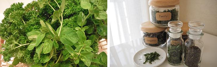 【画像9】バジル、イタリアンパセリなどは風通しのいい場所で干してドライハーブに。イタリアンパセリやタイムなどは仕上げにオーブンで乾燥させると色や香りがよくなる(画像提供/藤井純子さん)