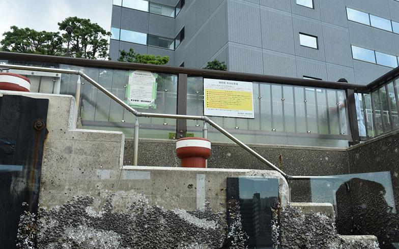 【画像9】こちらは勝鬨橋(かちどきばし)簡易船着場(撮影/榎並紀行)