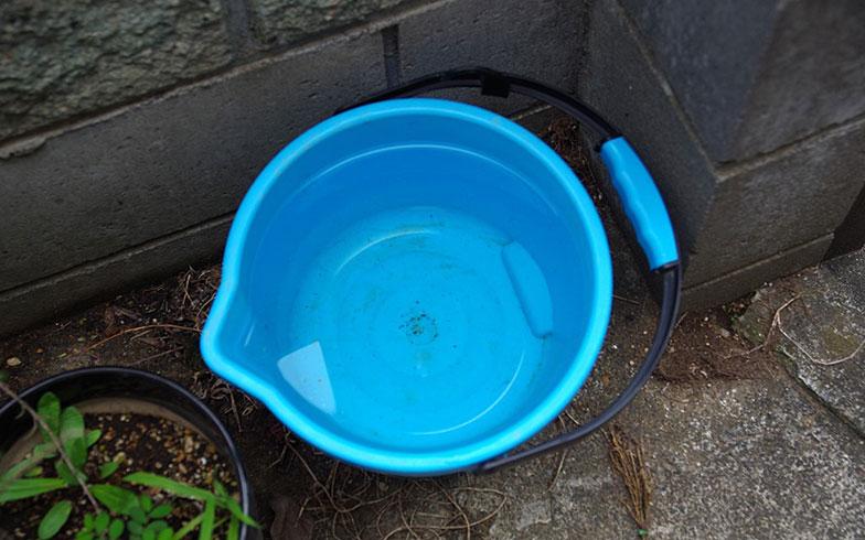【画像3】ちょっとした量の水からでも蚊は発生する(写真撮影/玉置豊)