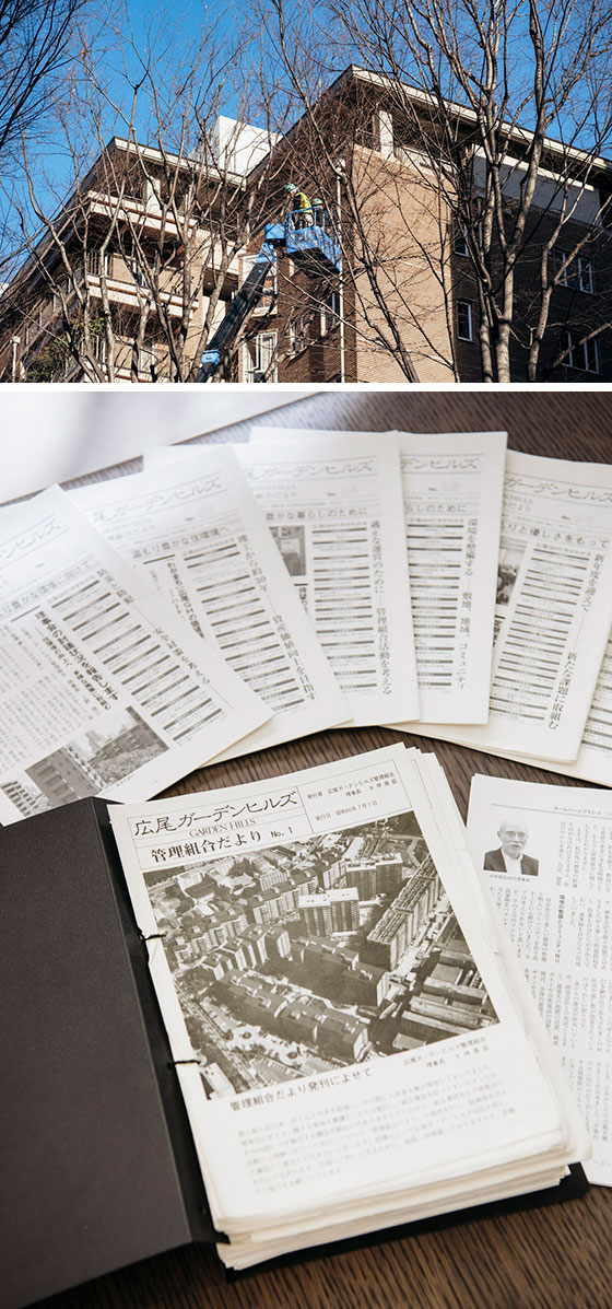 【画像3】(上)敷地のメインストリートは渋谷区道。剪定は渋谷区が行うが、枝を極端な短さに摘まずHGHの景観に融合するように配慮している(下)年3 回のペースで発行され、昨年末の最新号でNo.88を数える『広尾ガーデンヒルズ管理組合便り』(写真撮影/永井泰史)