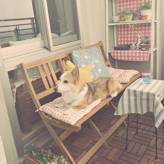 【画像1】「うちは、1LDKで部屋もバルコニーも狭いので、バルコニー専用というより、部屋の中でも使える一石二鳥アイテムをそろえています」とhannaさん。ベンチの前のテーブルは、部屋のソファのサイドテー ブルとしても使っているもの(写真提供/hannaさん)