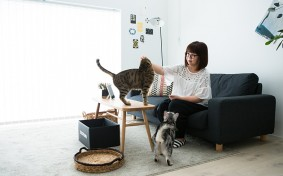 無印良品の家に「家大使」として2年間無料入居中。猫4匹との暮らしをレポート!