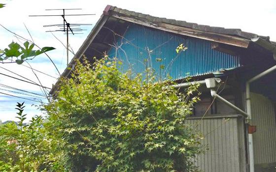 【画像7】これから始まるプロジェクト。第4号になる「おっぱま100万円ハウス」(写真提供/KUG空き家プロジェクト)
