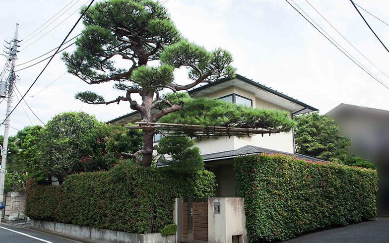 【画像2】生垣が豊かで道路から見える緑視率の高い家は、街自体の価値を高める(写真撮影/片山貴博)