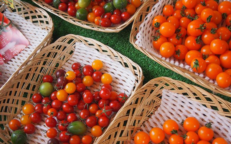 【画像5】おもにフルーツトマトを取り扱う『花十○十(はなとまと)』。(写真撮影/明日陽樹)