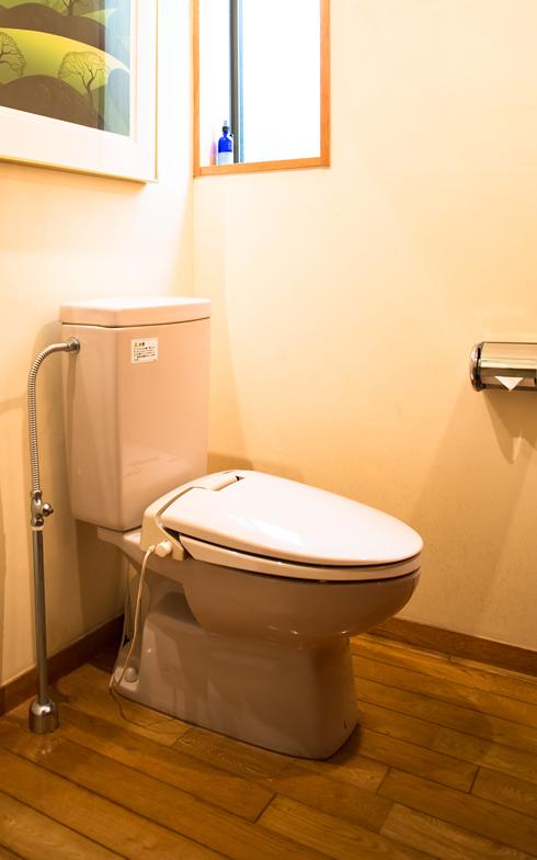 【画像7】廊下からシームレスで同じ床材が敷かれたトイレ。子供だって、汚さないようにしようと思える仕掛けがここにも(写真撮影/片山貴博)