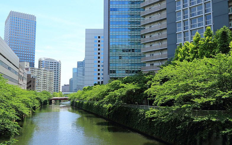 【画像7】目黒川へも歩いて行ける(写真/PIXTA)