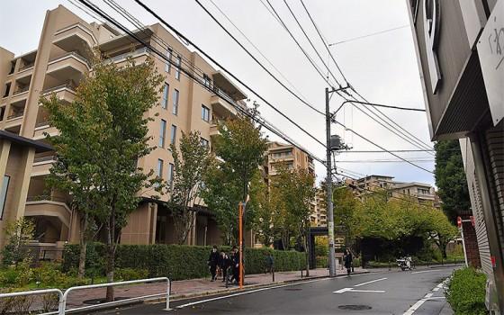 【画像2】緑も豊かで品の良い街並み(撮影/小野洋平)