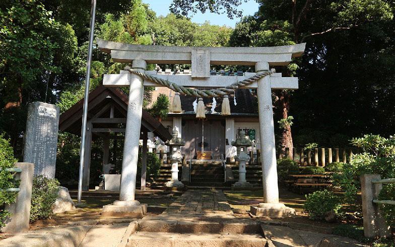 【画像6】緑に囲まれた岸根杉山神社(写真撮影/小野洋平)