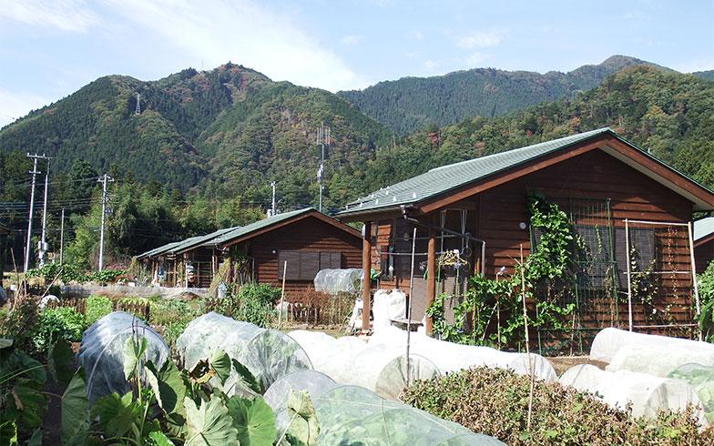 【画像1】おくたま海沢ふれあい農園のクラインガルテン。ガス、水道、電気完備のラウベが並ぶ。遠くに山々が見える美しい風景だ(写真撮影/織田孝一)
